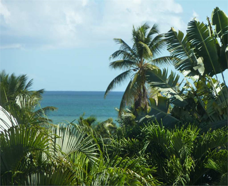 Expertise comptable Guadeloupe, Baie-Mahault, Jarry